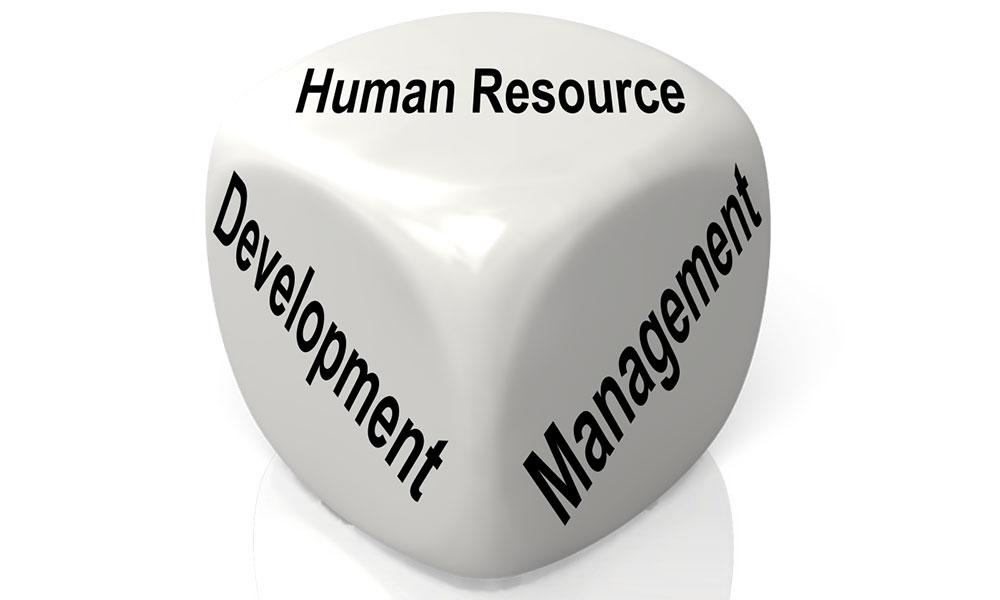 توسعه منابع انسانی در آغاز هزاره سوم