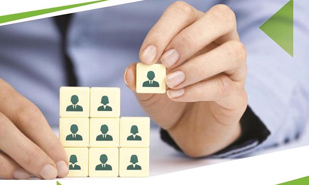 استراتژی های کارکردی مدیریت منابع انسانی