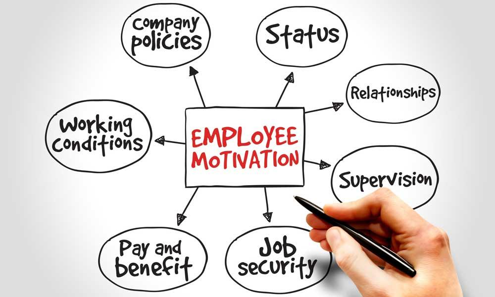 نقش انگیزش در عملکرد کارکنان 2