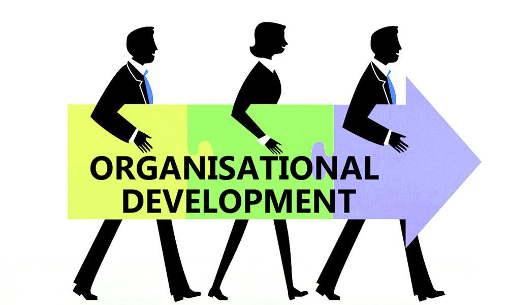 فرآیند توسعه سازمان11