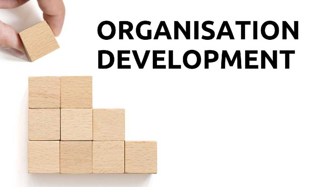 فرآیند توسعه سازمان44